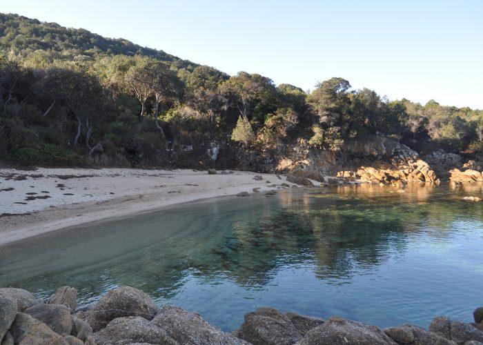plage_1 - porto-polloc - Location de vacances en Corse à Porto-Pollo